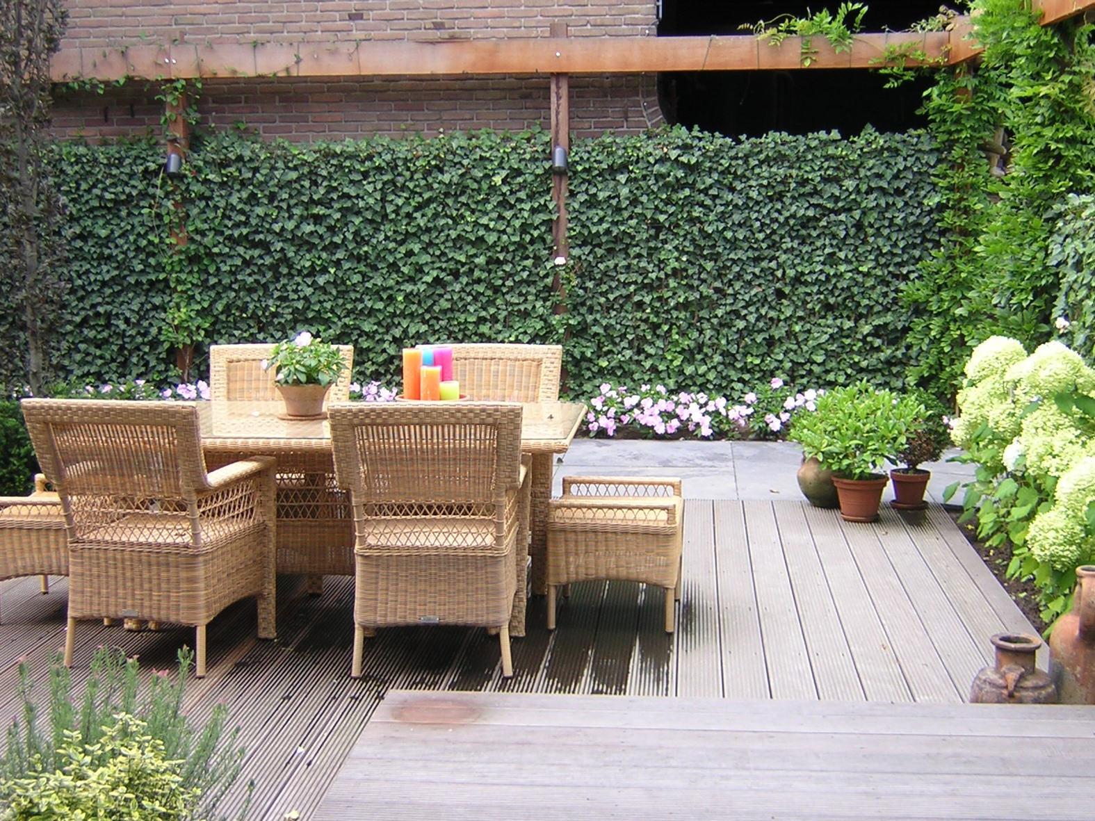 Die Hecke Am Laufenden Meter Zaun Pflanzen Oder Hecke Bauen