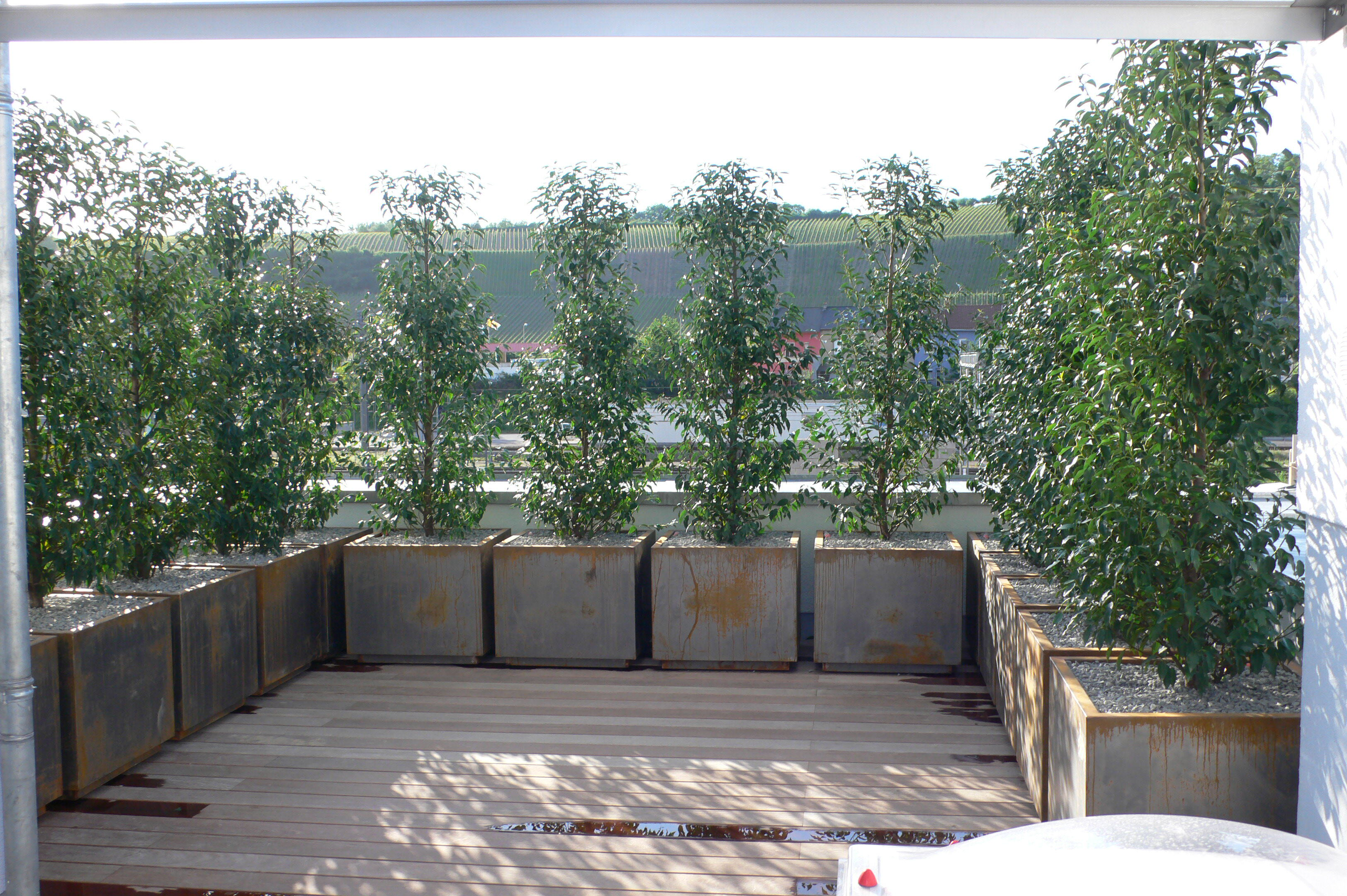 Mobiler Sichtschutz Mit Pflanzen : Pin Moderner Sichtschutz Im Garten ...