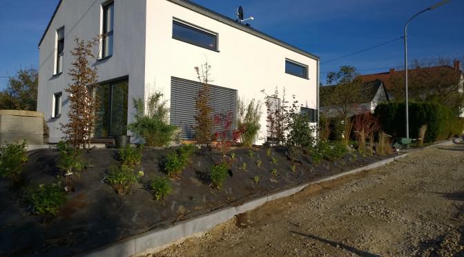 Terrasse mit grünem Sichtschutzkonzept