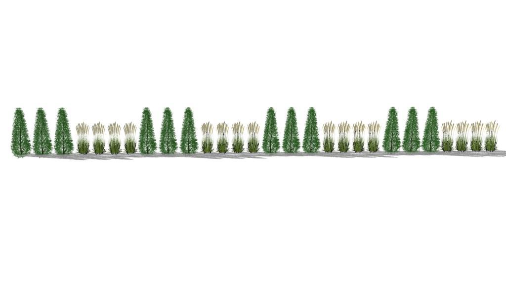 Sichtschutzkombinationen Teil 2 - Säulenbäume und Gräserhecken