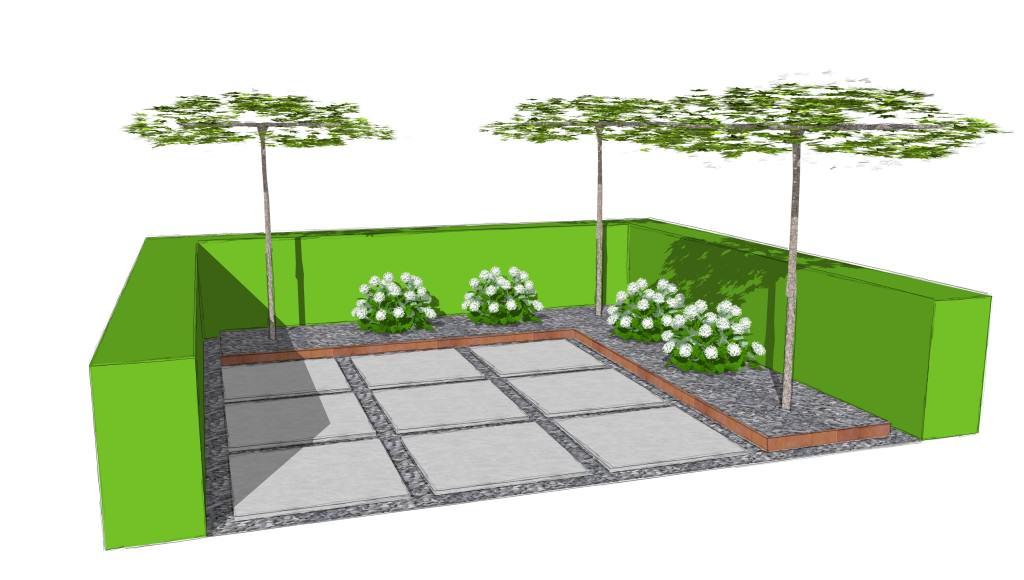 moderner Patio mit Grossformatplatten, Dachpatanen, Heckenelementen, Ballhortensien und Cortenstahlband
