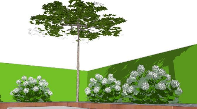 Patiotekt(o)ur – die Architektur des Patios Teil 1 – In 7 Schritten zum grünen Patio
