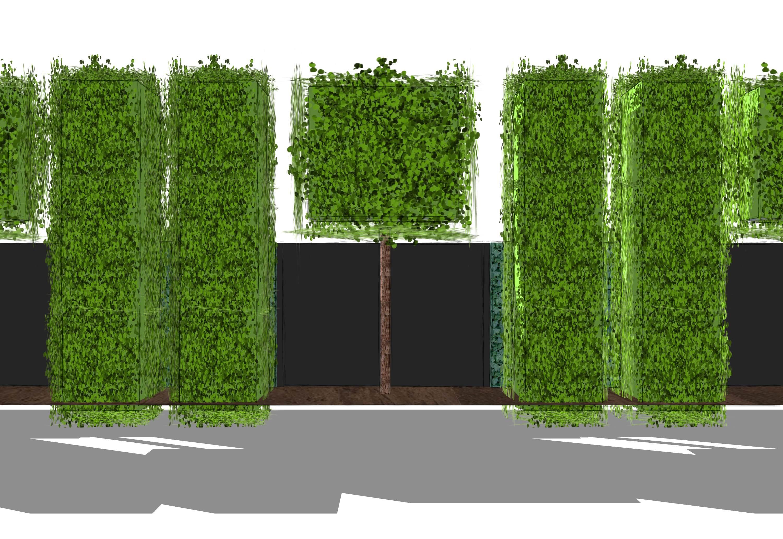 Sichtschutz Pflanzen Garten ist perfekt stil für ihr haus design ideen